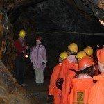 Auf der Suche nach Mineralien